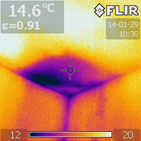 Thermal imaging indicates there's insulation missing in the 